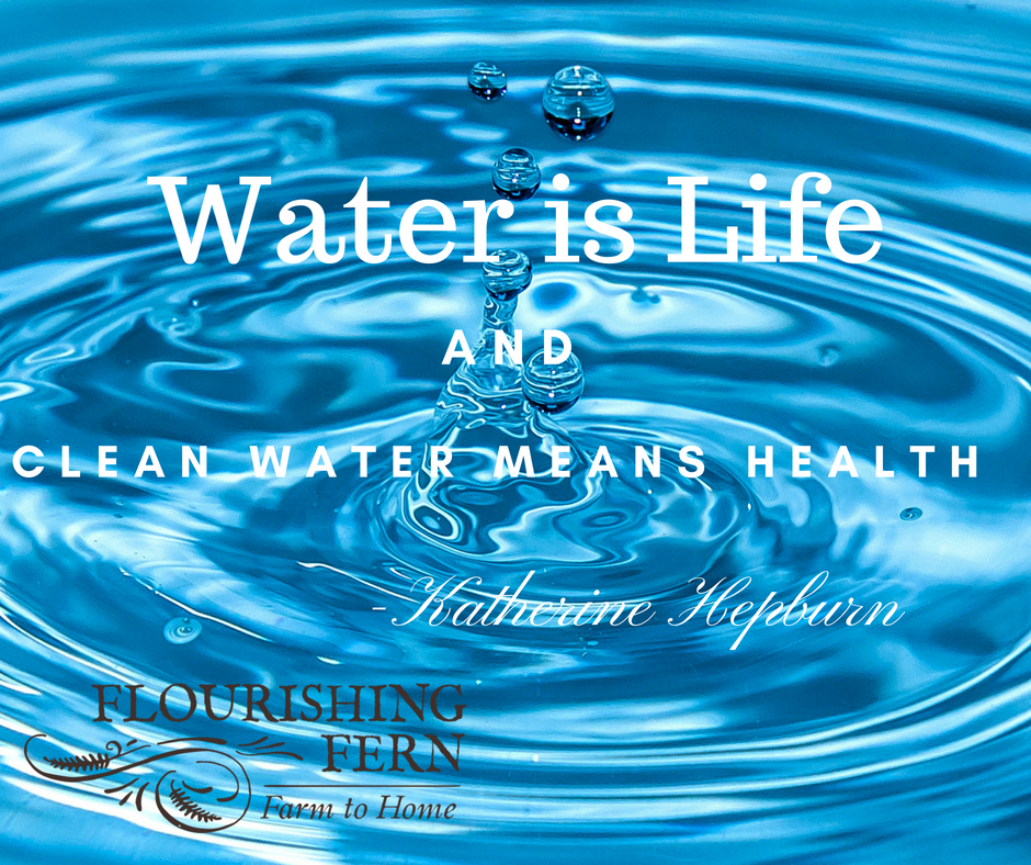 Water is Life! Three Simple ways to Increase Hydration without Feeling Water-Logged