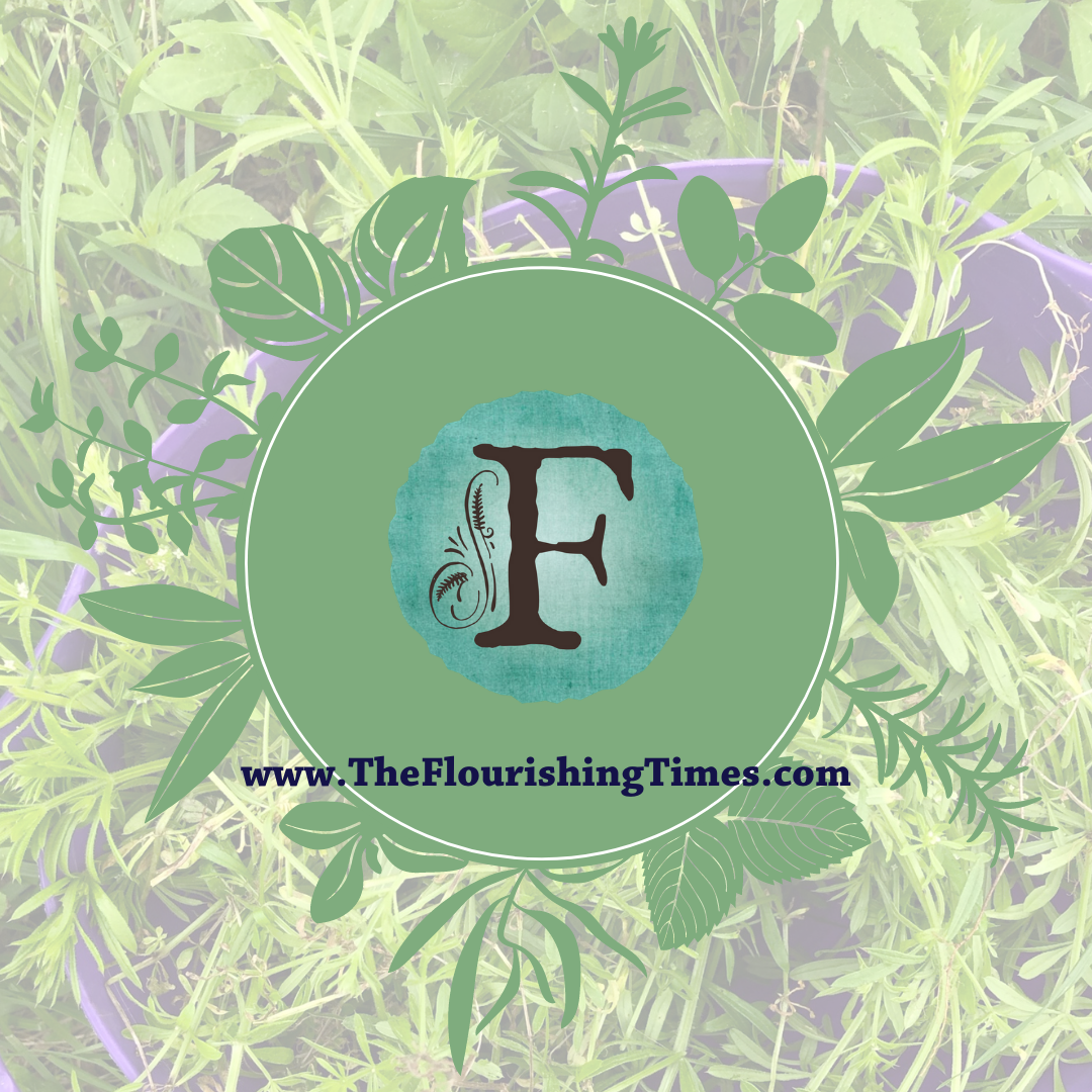 This is the Flourishing fern logo of an F with plants on the background and a circle around it.